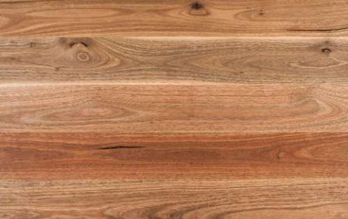 Spotted Gum Swatch B